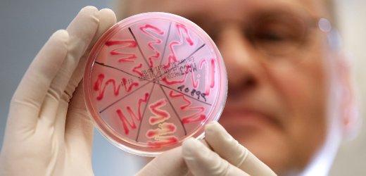 Diagnosi batterio